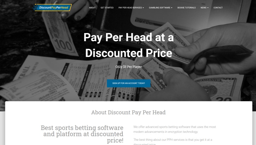 Discount Pay Per Head Review