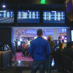 Iowa Sports Betting Achieves Daily Record in February