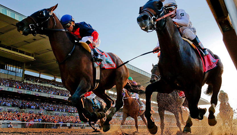 Sportsbook Guide to Horse Racing for Beginners